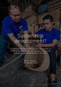 Sample essay on Sustainable Development